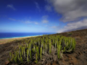 Cofete- Fuerteventura - Foto di Paolo Fefé - http://www.flickr.com/paolofefe
